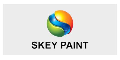 Bảng màu sơn Skey
