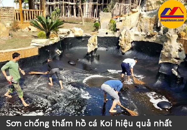 Sơn chống thấm hồ cá Koi mang lại hiệu quả tốt nhất