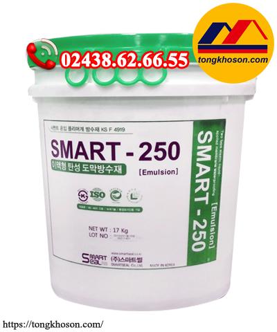 Sơn chống thấm gốc Polyme Smart 250