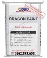 Bột bả Dragon nội thất siêu trắng