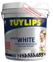 Sơn Tuylips siêu trắng  nội thất
