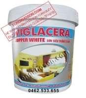 Sơn siêu trắng trần Viglacera