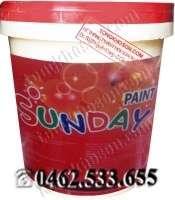 Sơn nước Sunday Anycolor nội thất bóng Anycolor
