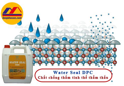 chất chống thấm thẩm thấu Water Seal